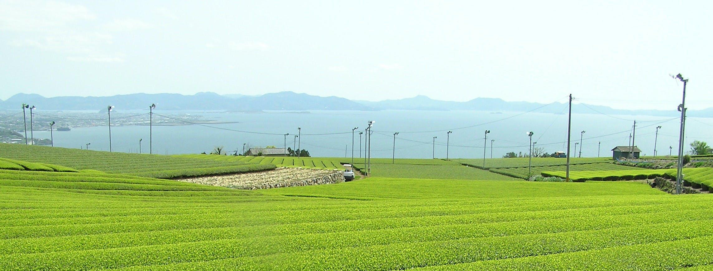 長崎県東彼杵町