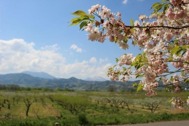 長野県小布施町