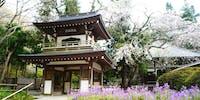 鎌倉の歴史と自然の中で、心と身体を高めたい人を募集しています!