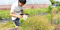 子どもが憧れる農業の未来をつくる。 熱い想いを持つ若手農業者たちとともに、新規就農にチャレンジしたい方募集