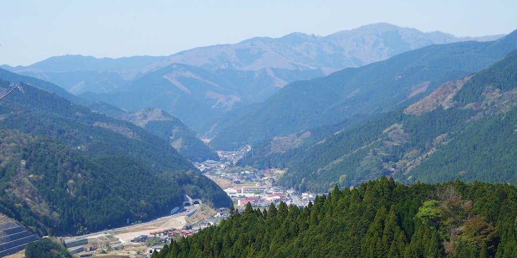 西粟倉村の林業を支える、山の調査員さん募集