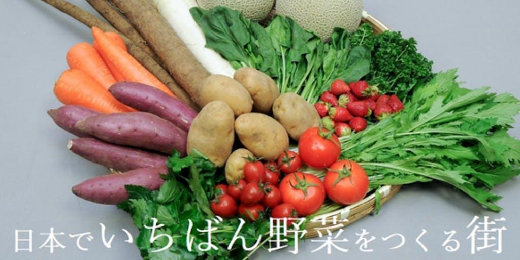 野菜の街をPRしナイト~「日本でいちばん野菜をつくる街」の地域編集者を募集します~