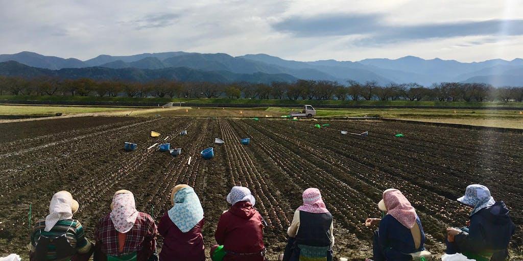 【2/27東京開催・無料】これからの農業は「チーム戦」。富山県朝日町が一体となって、農業家育成を推進します