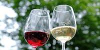 今注目の「長野ワイン」「東御ワイン」で一緒に東御ファンを増やしませんか?
