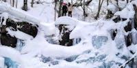 世界一の雪質!?下川町でスノーシューイング体験!