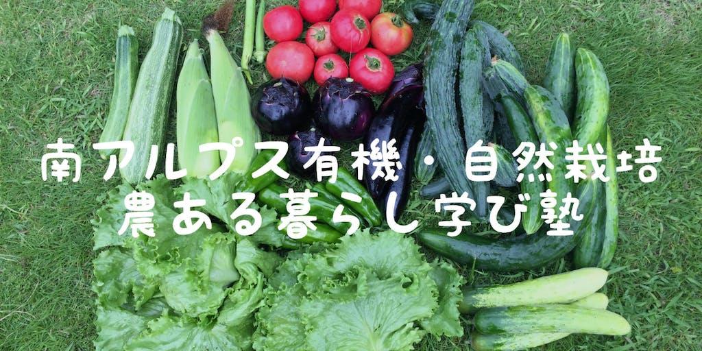 【オンライン&現地研修】農業や有機・自然栽培のイロハを学びませんか?