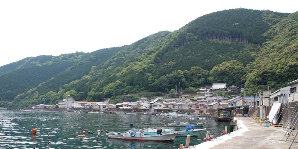 【尾鷲のしごと留学】漁業をもっと身近に!漁師体験してみませんか?