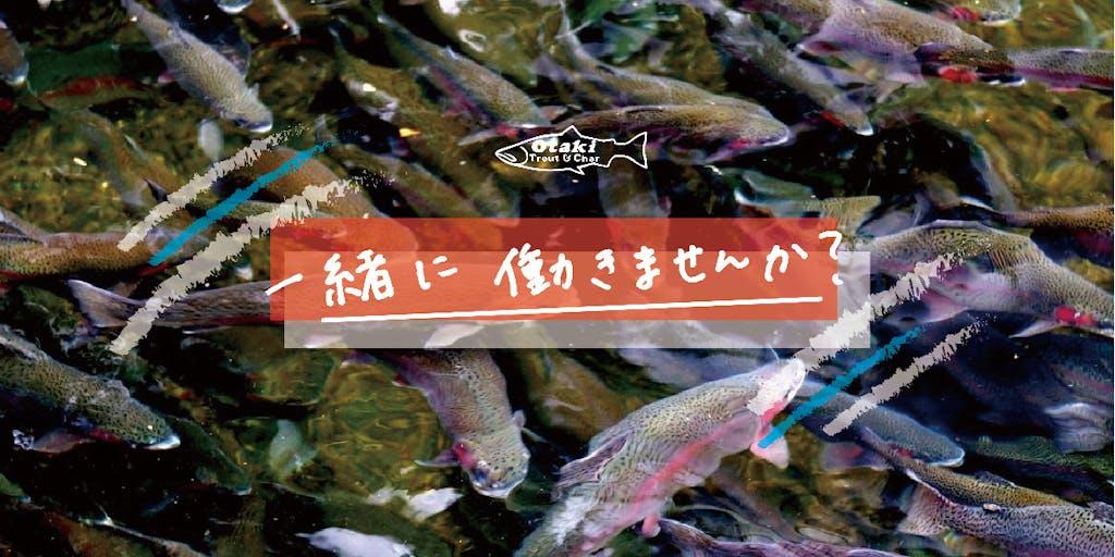正社員募集!自然の中で暮らし、魚を育てる仕事をしませんか?(移住サポートもします!)