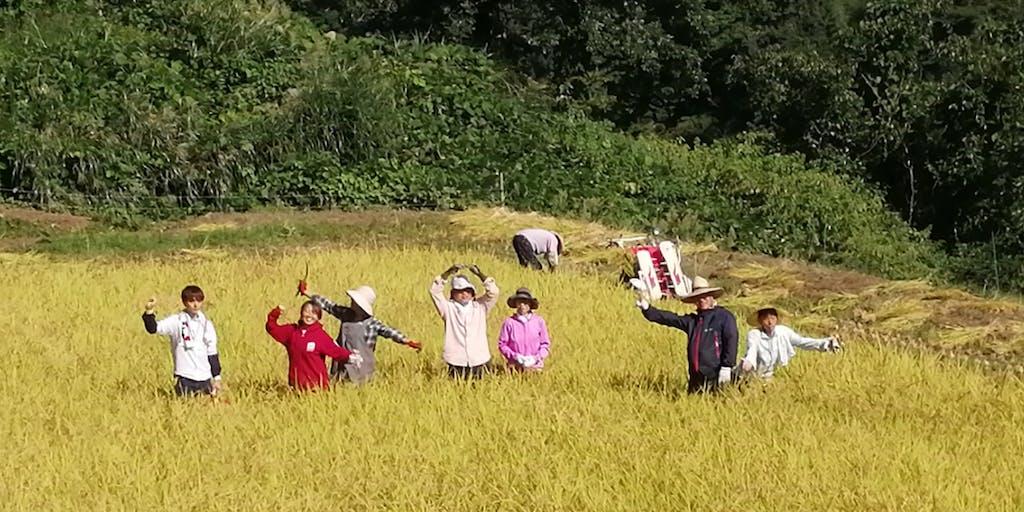 【農業体験】富山県南砺市の山間過疎地域を盛り上げる農業活動支援メンバーの募集