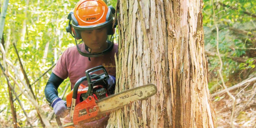 【地域おこし協力隊】林業に興味・関心のある方集まれ!