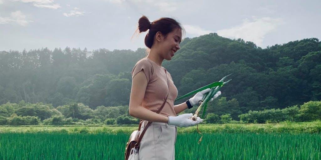 1次産業が元気すぎる町、北海道八雲町で、農業、酪農業、漁業と多彩な1次産業の体験を一挙にしませんか?