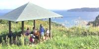 【募集終了】子ども・自然・森のようちえん・島暮らしなどに興味のある仲間を募集しています!