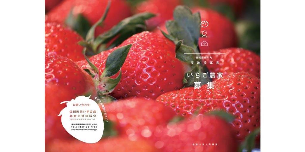\UIターンの若者が農業を盛り上げる町!/佐川町でいちご農家になりませんか?