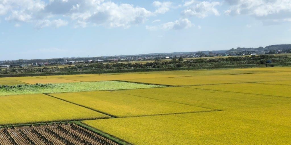 田舎で農業を。就農研修生募集!【七戸町・地域おこし協力隊】