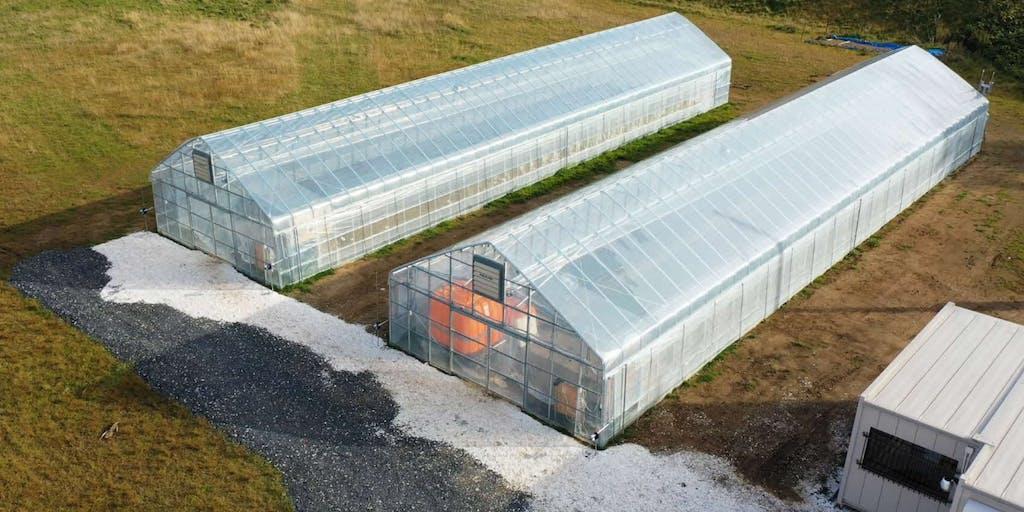 \仲間募集/村と共にビニールハウスで新たな農業に挑戦しましょう!
