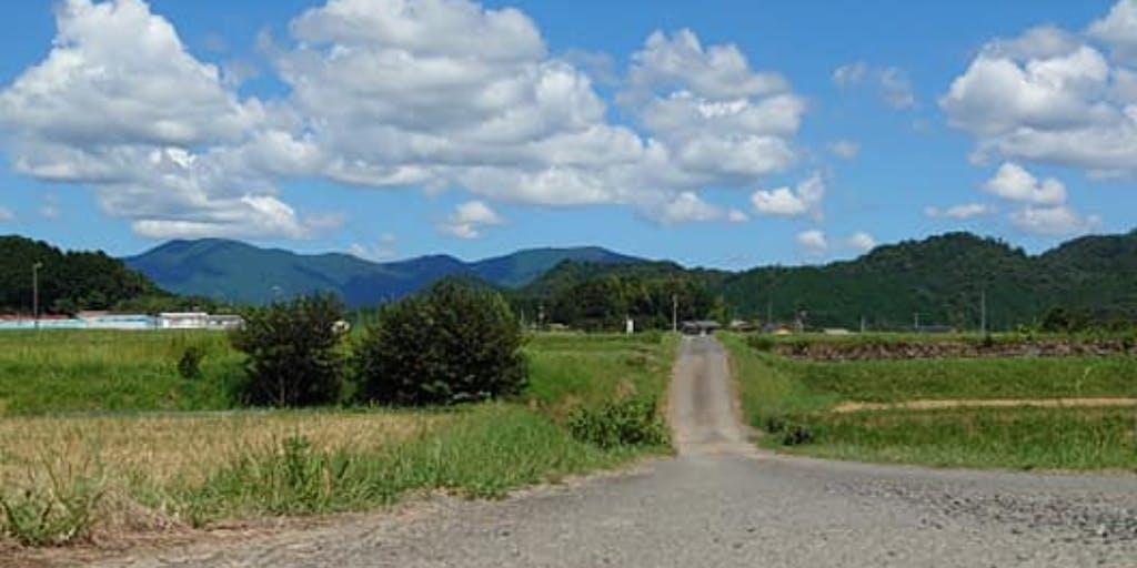 【8/28(土)オンライン個別移住相談受付中!】鬼北町は柚子の産地で、しいたけの栽培、雉などが特産品の町です。