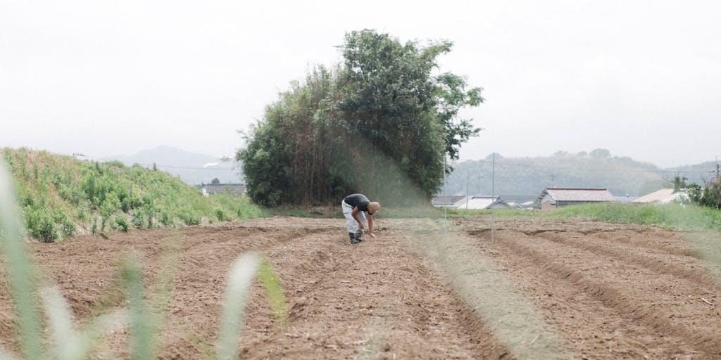 【山と土のある暮らし】地球に優しい野菜づくりに一緒に挑戦しませんか?(香川県まんのう町)