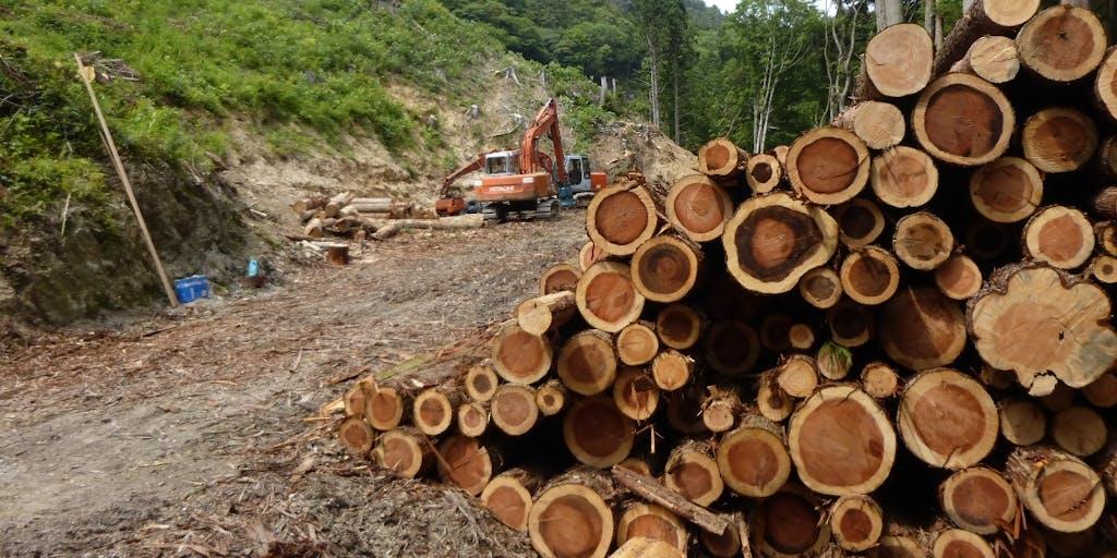【地域おこし協力隊募集】四国山脈を活用した林業or地域活性化に繋がるフリーミッションで募集します!