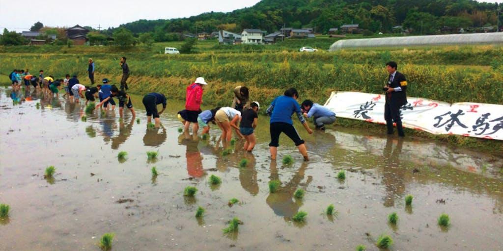【農林体験プログラム】里山の恵みを活かした「地域体験コンテンツ」を展開する宿を起点にローカルな魅力に触れてみませんか?
