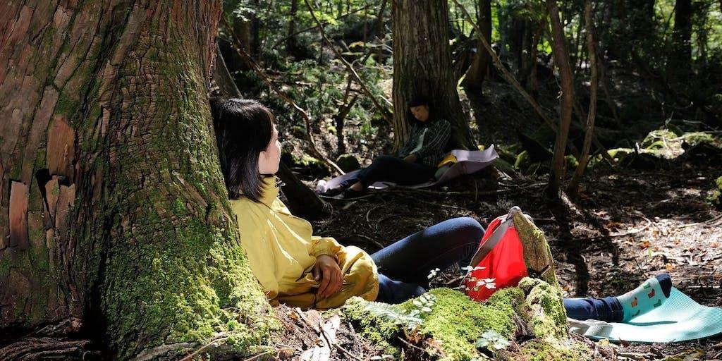 急ぎがちな日常を離れて、自然に抱かれる1日を過ごしませんか?【都立長沼公園 森林セラピー紹介ウォーキング】