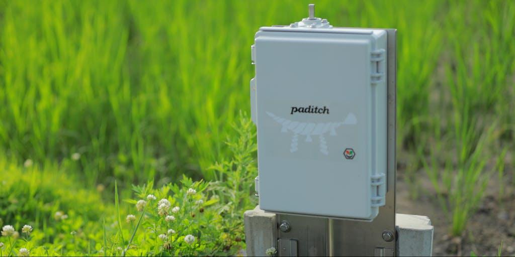 【フロントエンジニア】グローカルに働くスマート水田サービス paditch を一緒に開発してくれる人募集!
