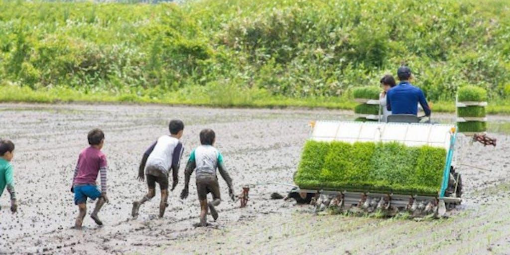 """【協力隊募集/最長3年保証】初心者OK!地元の若手農家の挑戦と共に伴走する、""""農家サポーター""""を募集。"""