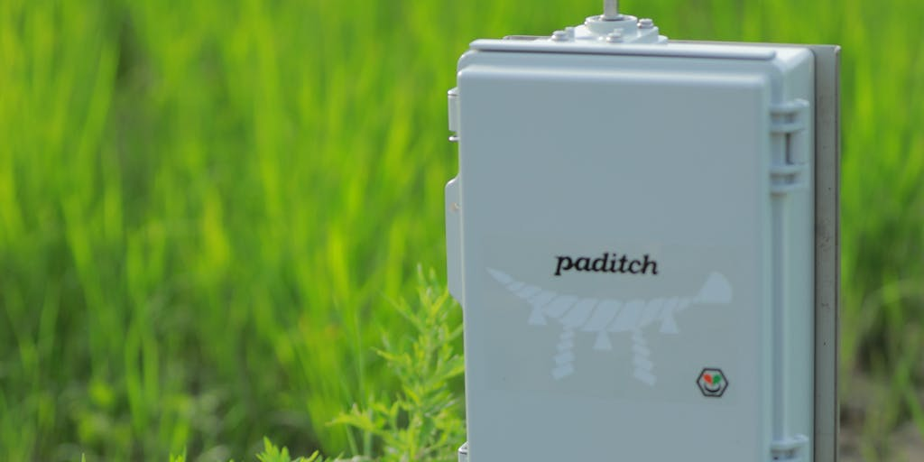 【インフラエンジニア】グローカルに働くスマート水田サービス paditch を一緒に開発してくれる人募集!