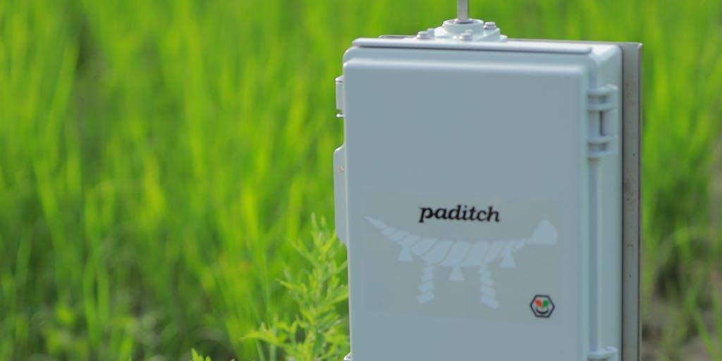 【営業】グローカルに働くスマート水田サービス paditch を一緒に開発してくれる人募集!