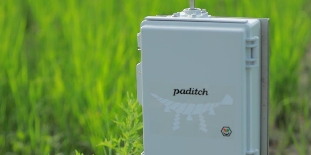 【広報/動画クリエイター】グローカルに働くスマート水田サービス paditch を一緒に開発してくれる人募集!