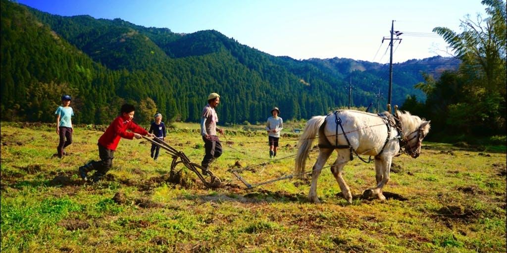 【地域おこし協力隊】自然栽培とともに、ココロユタカな農のある暮らしをつくる