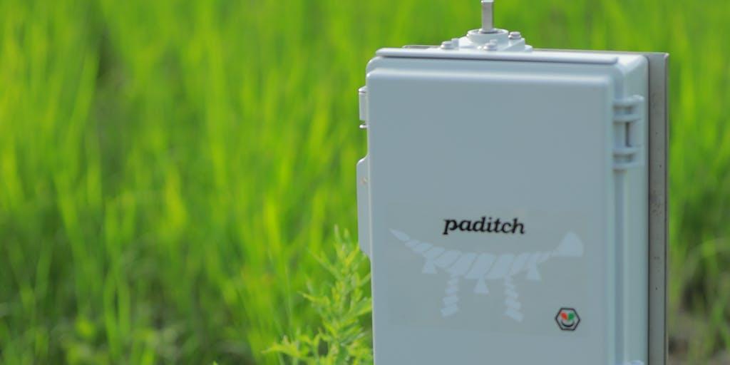【IoTエンジニア】グローカルに働くスマート水田サービス paditch を一緒に開発してくれる人募集!