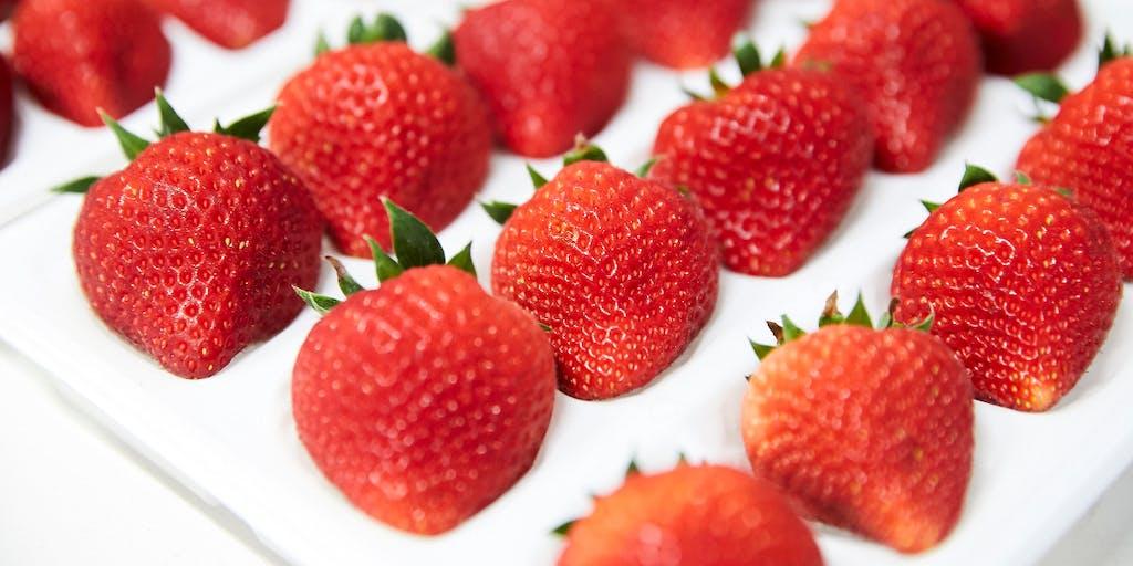 【オンラインセミナー】三陸沿岸・大船渡を夏イチゴの産地に!ここでしかできないイチゴの周年栽培で農場経営を目指しませんか