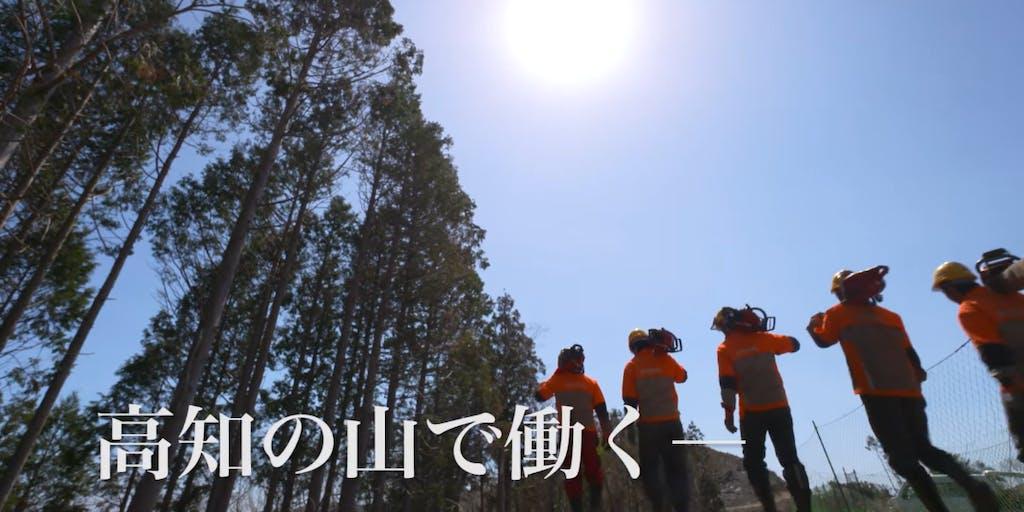 \森林率日本一の高知県で林業で稼ぐ!/森林と共に生きることを選びませんか。