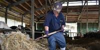 【宮城県丸森町】将来は「牛飼いのプロ」に!町営牧場で、畜産支援員を募集