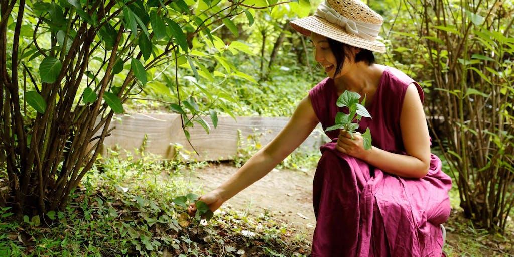 地域の自然資源・薬草を活用して、すこやかな食卓と経済を作りたい!