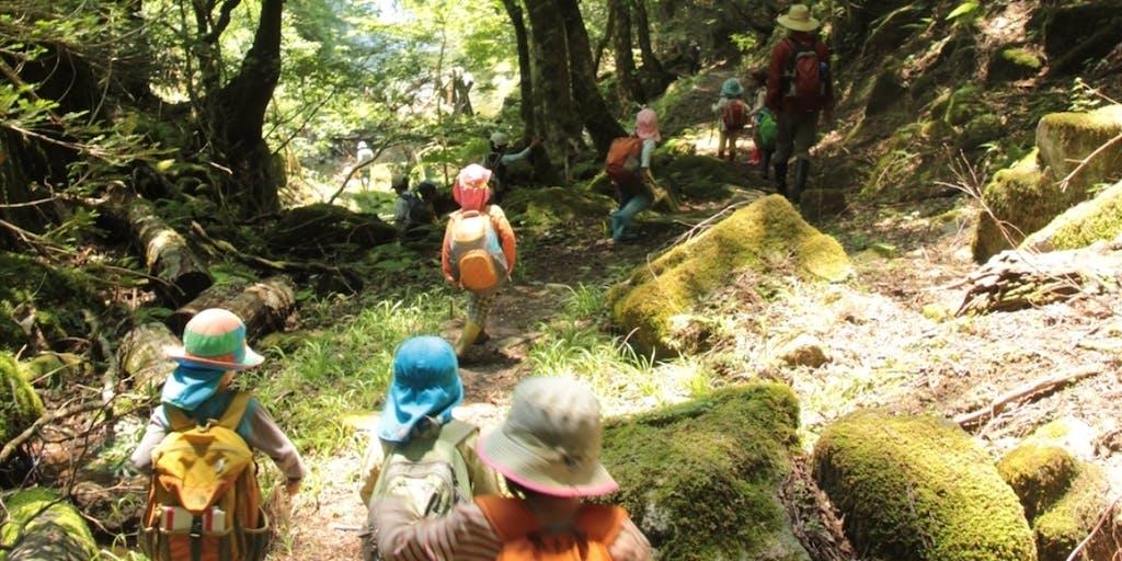 【2019年9月1日~30日】智頭町で就労体験しながら田舎子育てを満喫~森のようちえんやサドベリースクールに体験入園・入学してみよう~