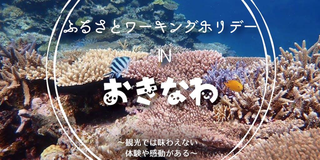 多様な働き方を体感!沖縄に住めてお給料もでる「ワーホリ」に興味がある人集まれ〜っ♫