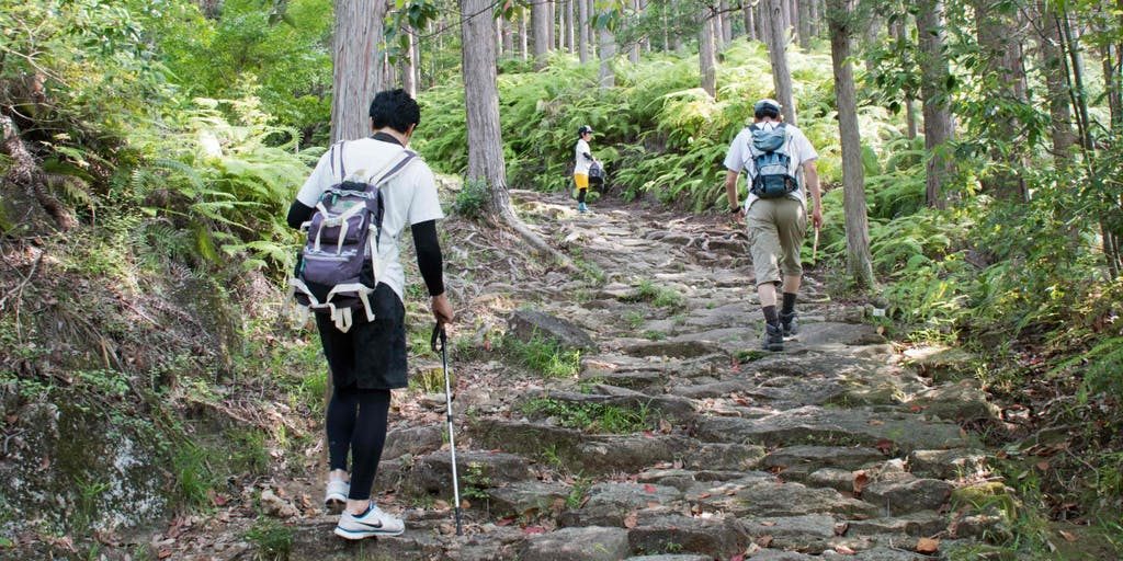 はじめての熊野古道なら、みんなと一緒に。紀伊半島の今と昔が重なり合う、年に一度のウォーキングイベント。