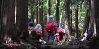 """大阪で""""森のようちえん""""について話しませんか?森を感じる体験会&鳥取の食材を味わう交流会!"""