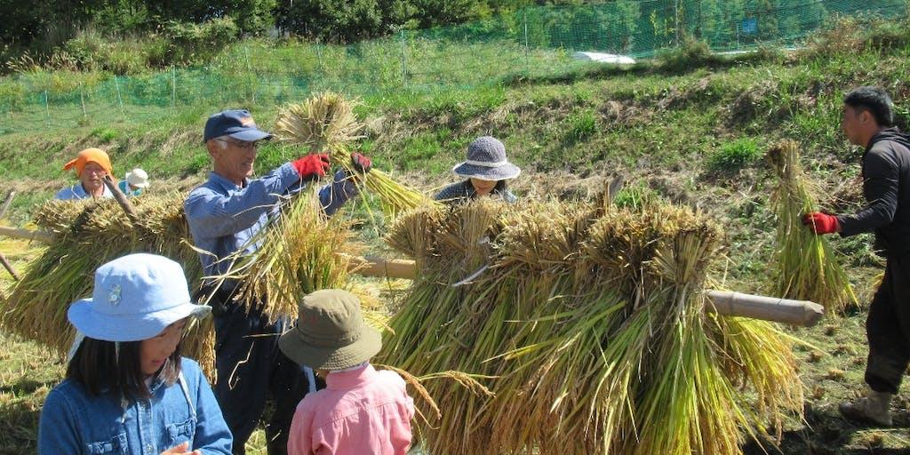 東京から片道2時間の「行きつけ農家」を作ろう! 農家さん宅で家族のように過ごす 1泊2日のいなかホームステイ
