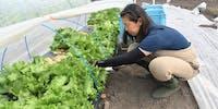 就農への一歩を踏み出してみたい方! 北海道深川市は全面サポートいたします。【地域おこし協力隊】