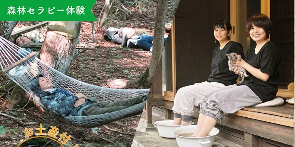 [体験&お土産付]森を感じる一泊二日|森林セラピー&ヘナ足湯|2名様1室利用(1泊2食付)