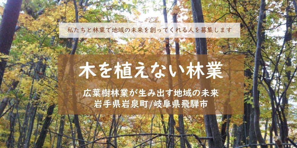 木を植えない林業ー広葉樹林業が生み出す地域の未来ー 私たちと林業で地域の未来を創ってくれる人を募集します
