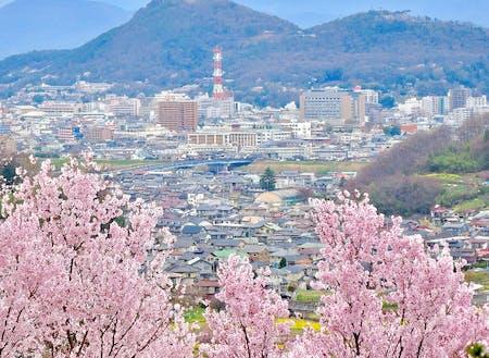 福島市の観光名所「花見山」から見える市街地。