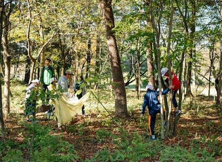 森の中で過ごす日常