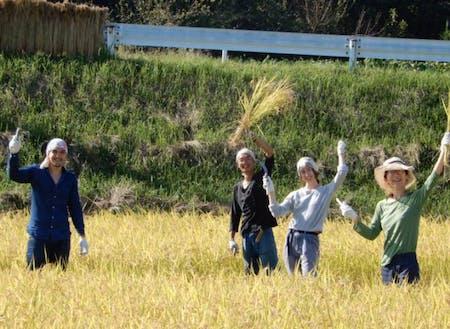 ゲストの東山さんと地域の方の稲刈り参加の様子