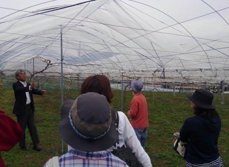 ぶどうつくり隊の説明会の様子。左側で説明しているのが葡萄が丘農業研究所の所長である工藤氏。他は説明を聞く参加者の方々。