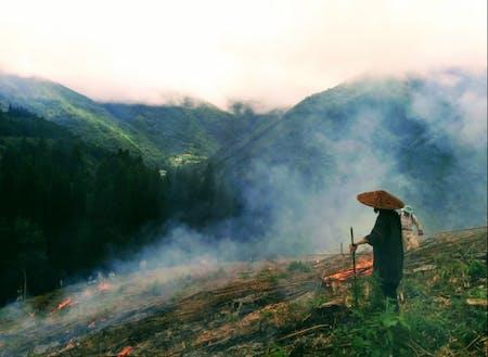 8月に向山地区で行われる、焼畑の火入れの様子