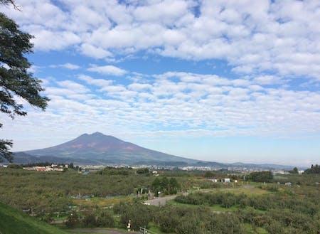 「津軽富士」と称される岩木山と、りんご畑の美しい弘前の風景