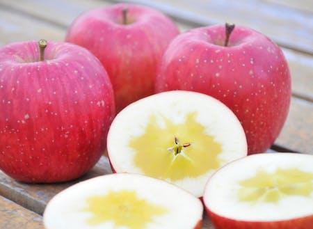 米崎りんご一押しの「サンふじ」